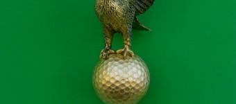 Eagle, Objekt in Plexiglas 23 x 19 x 11 cm