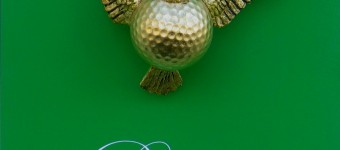 Birdie, Objekt in Plexiglasbox 23 x 19 x 11 cm